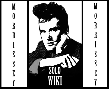 Solowiki17.png